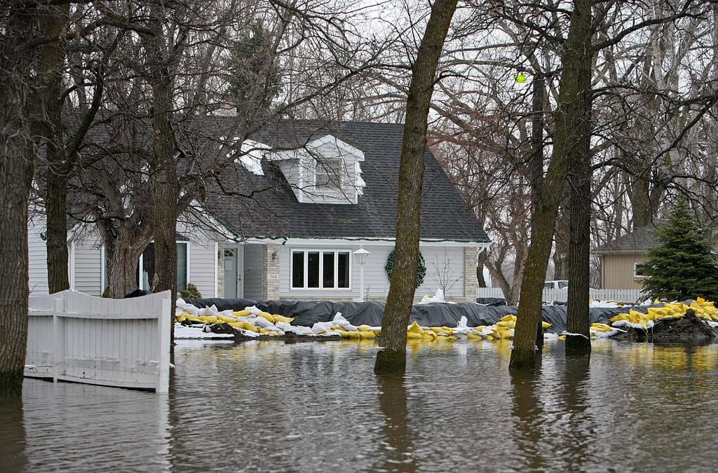 Flooded House - Blue Crest Electric